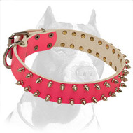 Extravagant Pink Pitbull Dog Collar for Diverse Look