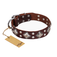 """King of Grace"" Brown Natural Leather Pitbull Collar"
