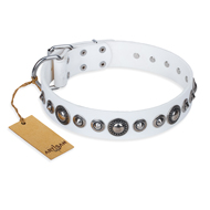 'Ice Age' FDT Artisan White Studded Leather Pitbull Collar
