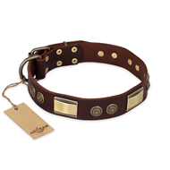 """Golden Stones"" FDT Artisan Brown Leather Pitbull Collar with Riveted Plates and Cirlces - 1 1/2 inch (40 mm) wide"
