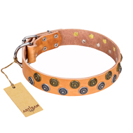 """Precious Sparkle"" FDT Artisan Handcrafted Tan Leather Pitbull Collar"
