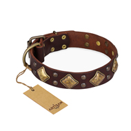 'Golden Square' FDT Artisan Brown Leather Pitbull Collar with Large Squares - 1 1/2 inch (40 mm) wide