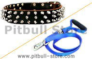 Dog Collar Leash (walking leash with swivel)+spike collar