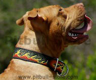 Leather Dog Collar with Bright Image of Burning Flames for Pitbull