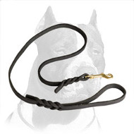 Pitbull Dog Leash Top Notch Quality