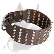 Extra Wide Mod Pitbull Dog Collar with Spikes and Pyramids