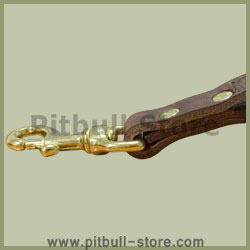 Leather Alternative Short Leashes for Pitbull collar
