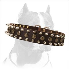 Pitbull Dog Leather Collar with Spikes and Studs