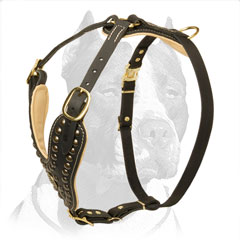 Handmade Studded Leather Dog Harness for Pit Bull