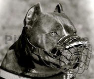 Wire Basket Muzzle with Leather Parts for Pitbull