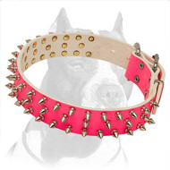 Pink Leather Spiked Pitbull Dog Collar