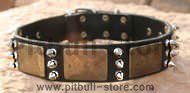 Gorgeous War Dog Leather Dog Collar-massive bras plates+3 spikes