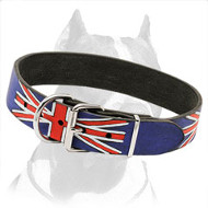 Marvelous Pitbull Dog Collar Hand-Painted in British Style