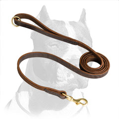 Pitbull Dog Leash Superior Design