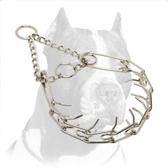 'Like a Mama's Pinch' Pitbull Dog Pinch Collar