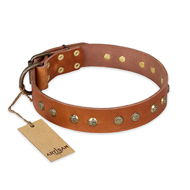 'Spring Flavor' FDT Artisan Pitbull Tan Leather Dog Collar with Old Bronze-Like Plated Engraved Studs 1 1/2 inch (40 mm) wide