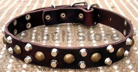 best designer leather dog collar