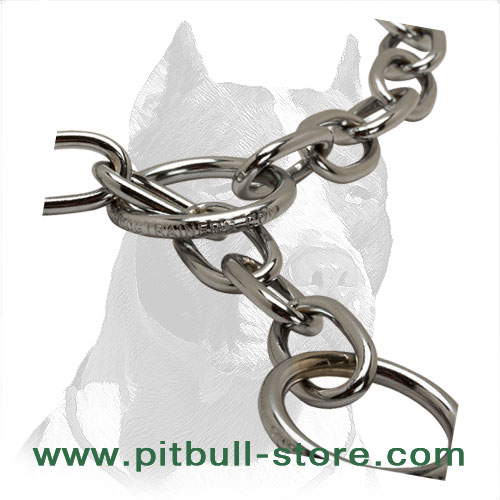 Pit Bull dog choke collar's rings to clip the leash