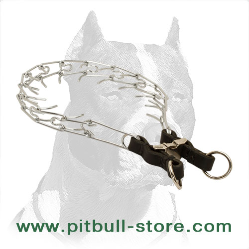 Dog pinch collar with quick-release buckle