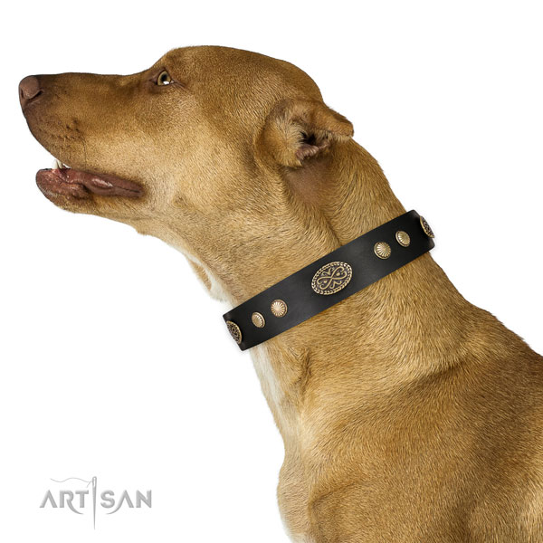 Durable hardware on full grain leather dog collar for stylish walking