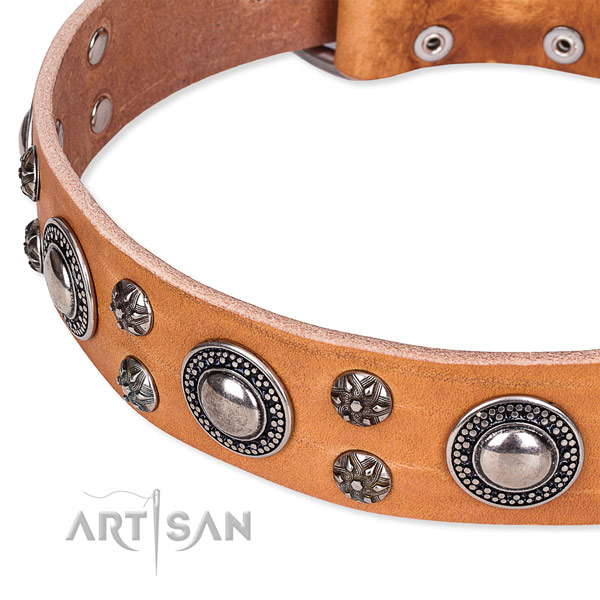 Easy to use leather dog collar with resistant to tear and wear durable hardware