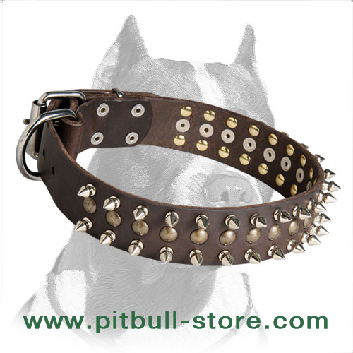 Pitbull dog collar made of genuine leather with rust-proof fittings