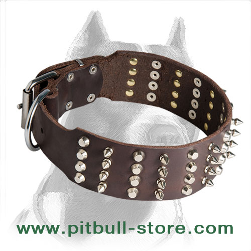 Pitbull dog collar, spikes and studs are hand set with brass rivets