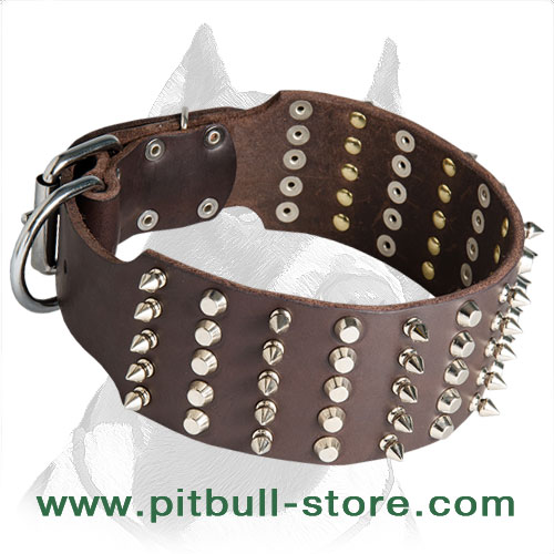 Leather dog collar with handriveted stainless fittings