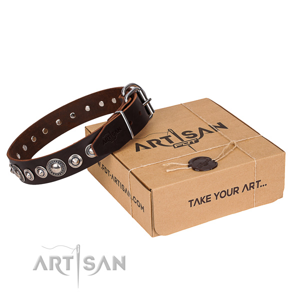 Impressive natural genuine leather dog collar for walking in style