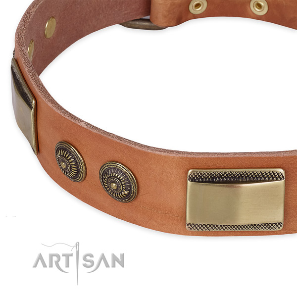 Walking genuine leather collar with reliable buckle and D-ring