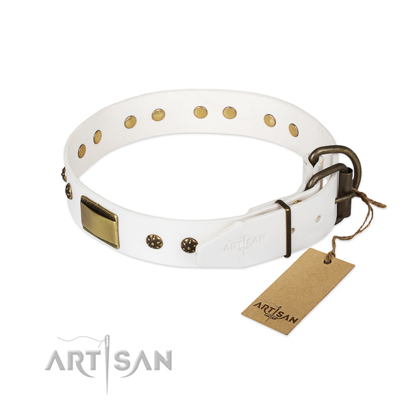 Walking full grain natural leather collar with studs for your four-legged friend