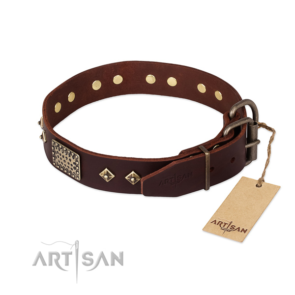 Daily use full grain genuine leather collar with adornments for your dog