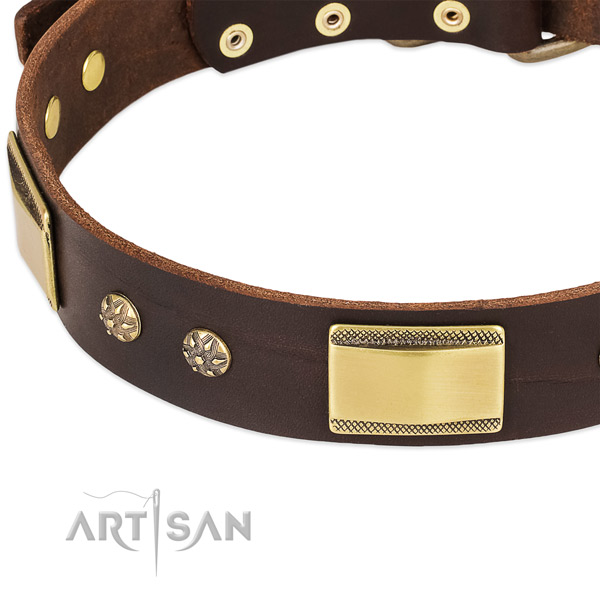 Stylish walking natural genuine leather collar with strong buckle and D-ring