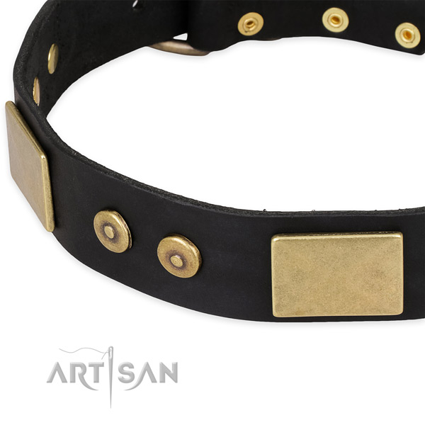 Handy use leather collar with rust resistant buckle and D-ring