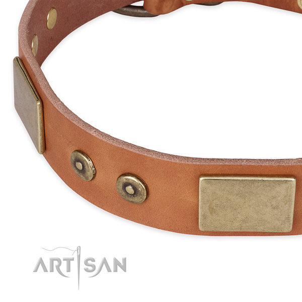 Walking natural genuine leather collar with corrosion resistant buckle and D-ring