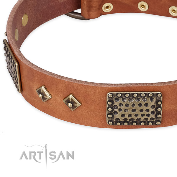 Walking genuine leather collar with rust resistant buckle and D-ring