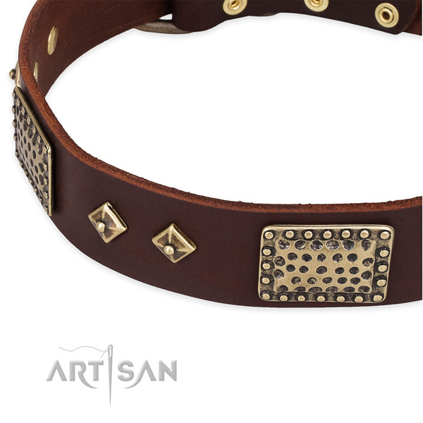 Daily use leather collar with rust-proof buckle and D-ring