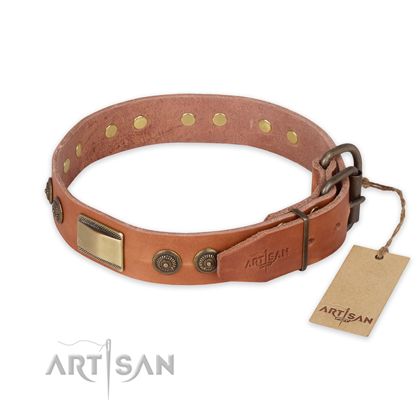 Daily use full grain leather collar with embellishments for your pet