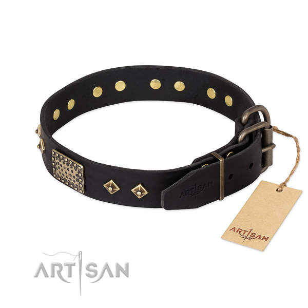 Walking full grain natural leather collar with embellishments for your pet