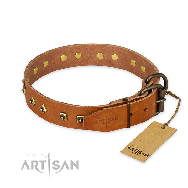 Everyday use full grain natural leather collar with adornments for your four-legged friend