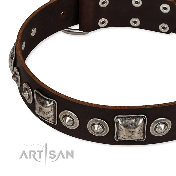 Easy to put on/off leather dog collar with almost unbreakable rust-proof set of hardware