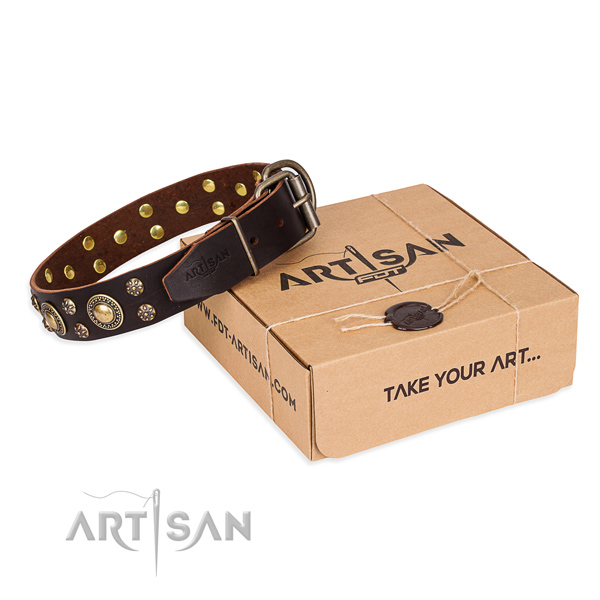 Casual style leather dog collar with refined decorations