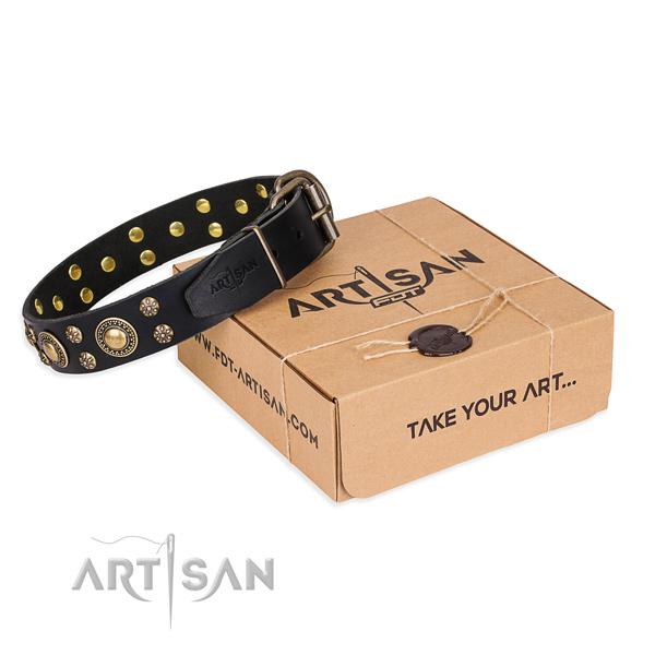 Casual style leather dog collar with astonishing decorations