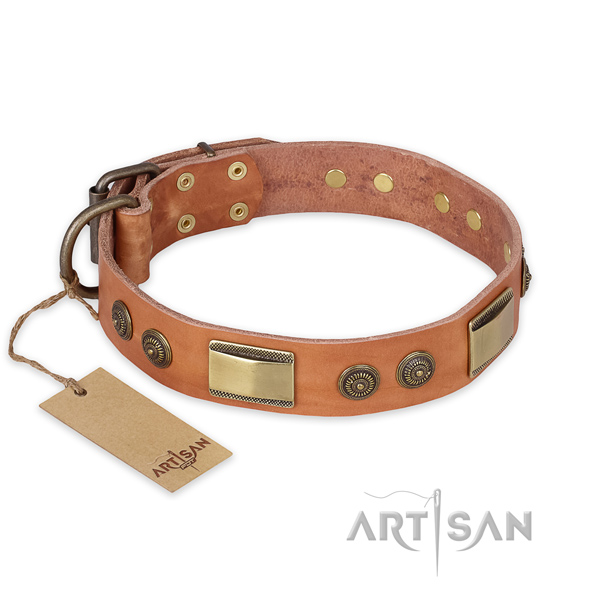 Unusual design decorations on full grain genuine leather dog collar