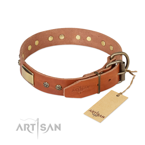 Daily walking natural genuine leather collar with studs for your pet