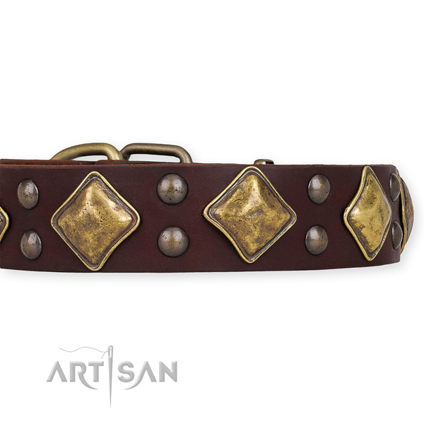 Easy to put on/off leather dog collar with extra strong non-rusting set of hardware