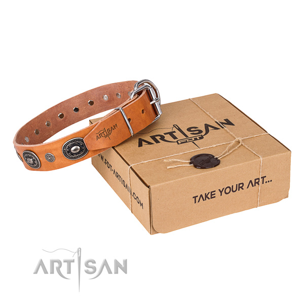 Fine quality leather dog collar for everyday use
