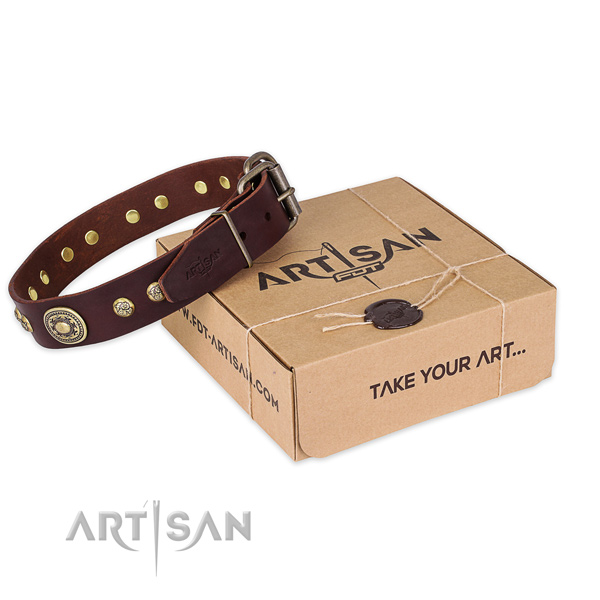 Finest quality full grain leather dog collar for daily use