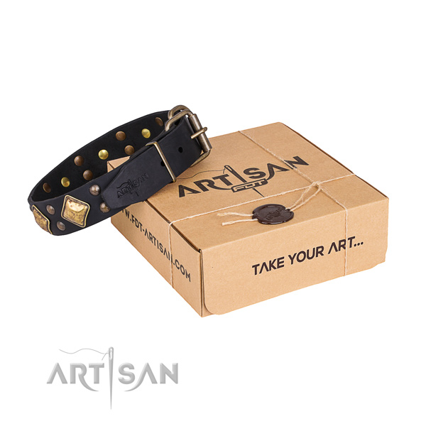 Fashionable full grain leather dog collar for stylish walking