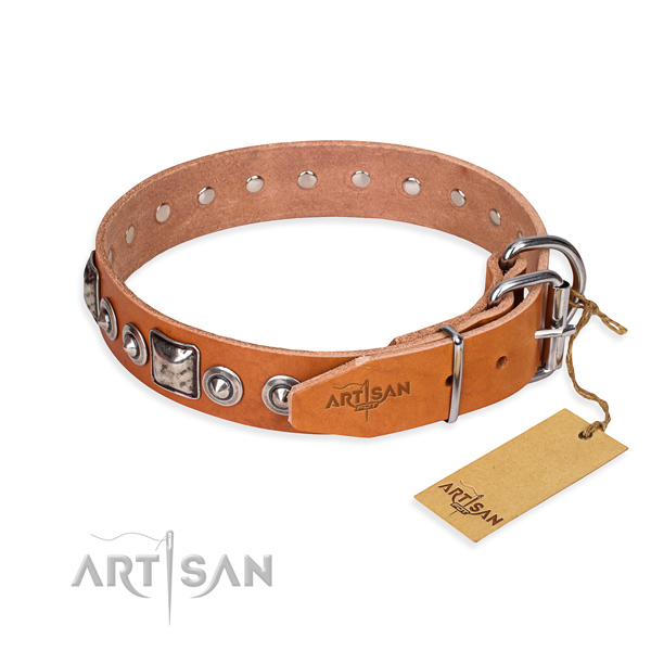 Functional leather collar for your noble canine